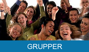 swe-ny-grupper-button